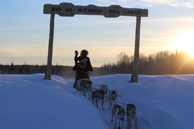 Take off on our private trail system through the beautiful snowy birch forest! During your mush your guide will be the lead musher as you follow him/her down the trail, take in the silence except for the occasional sound of the huskies barking with excitement!