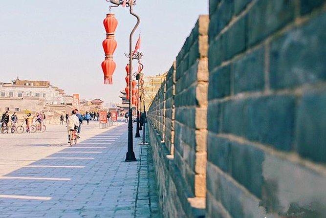 Recorrido privado de un día: Guerreros de terracota, Pequeña Pagoda del Ganso Salvaje, muralla de la ciudad y barrio musulmán, Sian, CHINA