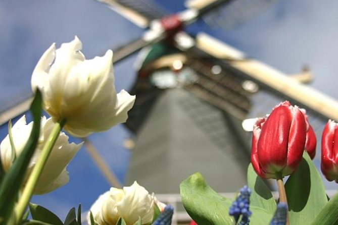 Private Tour to Keukenhof Gardens - Full Day Tour from Amsterdam, ,