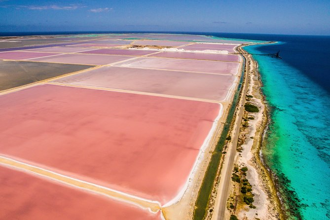 A relaxed way to see all the scenic and historic highlights of Bonaire in a half day and take a dip in the water! <br><br>At the South of Bonaire, view the salt pans, the slave huts and learn about Bonaire's history and culture. <br><br>Later in the North discover what an island of contrasts is Bonaire, with the rustic northern coastline, see 1000 Steps, Rincon and Goto Lake, a natural salt-water lake and one of the most beautiful places of Bonaire where you can spot flamingos.<br><br>Make it unique by choosing to add a 2 hour stay at Ocean Oasis Bonaire, a beach bar, where you'll have the chance to swim or snorkel if you have your own gear, and be amazed by the incredible waters of Bonaire's Marine Park. <br><br>We'll greet you with a fruity salad a beach bed and a towel, so relax and be sure to have experienced the most of Bonaire with this 5,5hour tour.<br><br>if you've chosen to go to the beach we will pick you up and take you back to the cruise ship, otherwise your tour will end at the cruise ship pier.