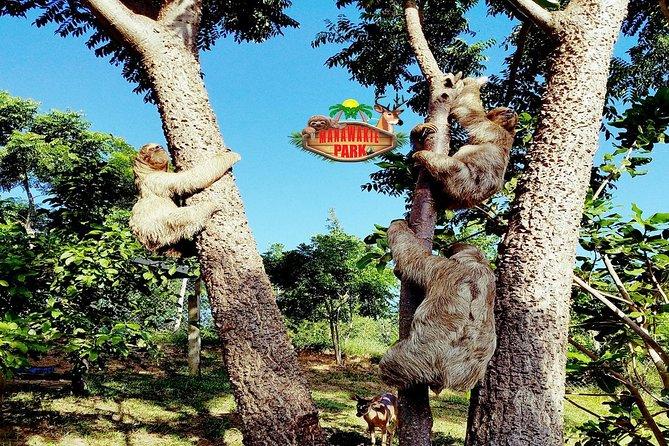 Private Tour Best of Roatan: Zipline/ATV Thrills + Monkeys/Sloths & Beach Escape, Roatan, HONDURAS