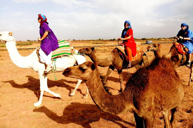All-Inclusive Agafay Desert and Atlas Mountains Day Trip from Marrakesh, Marrakech, cidade de Marrocos, MARROCOS