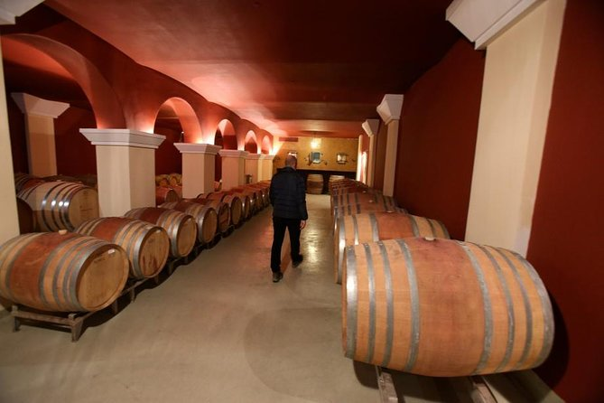 Electric Bike Tour and Wine Tasting from Nice, Niza, FRANCIA