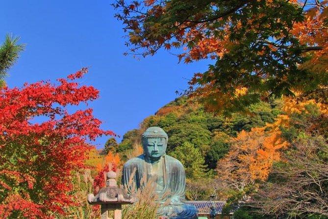 Tour En Español Por Kamakura, Tokyo, JAPON