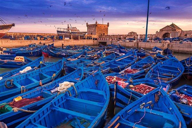 Essaouira Day Trip from Marrakech, Marrakech, Ciudad de Marruecos, MARROCOS