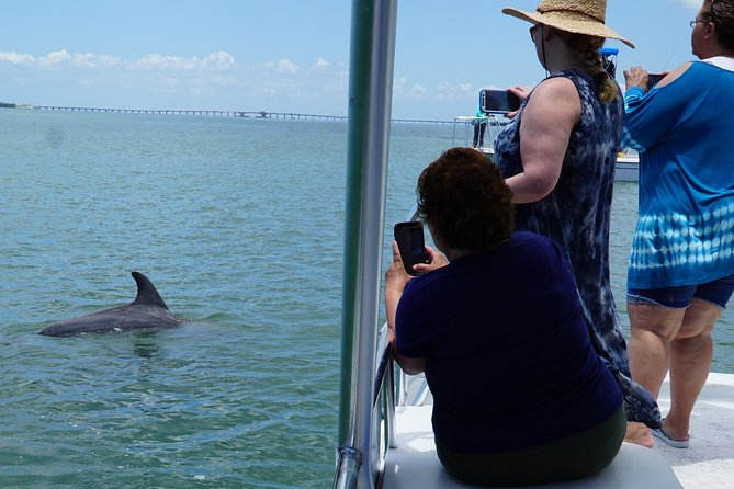 Depart on a hour and a half dolphin and Wildlife adventure. You will explore the Gulf of Mexico and the beautiful back bay. We will cruise the grass flats to look for manatees grazing (Seasonal) and dolphins playing. At a low tide you can often view wading birds on the exposed grass flats.