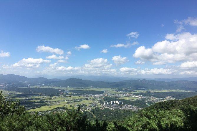 Gyeongju UNESCO World heritage tour including Bulguksa from Seoul by KTX train, Gyeongju, COREA DEL SUR