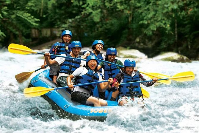 Ayung water rafting as a place for Ubud rafting tour considered as the best whitewater rafting in Bali. Due to the white water river in Ubud very suitable for beginner and very appropriate for family activities.If you do Ayung Rafting Bali, then you will enjoy the Bali rainforest and very well maintain rice field. You may also be able to see wildlife in the Bali rainforest such as beautiful Blue Javan Kingfisher. If you would like to discover a hidden waterfall, then you can find it by doing Ubud water rafting. Scenery and wildlife that you can get here such as rice field, and jungle.
