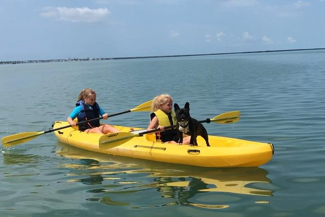 We have a great place to paddle around our location off the beach to open water of the bays and through mangrove trails. Where you will see manatee, dolphin, birds. . We have doubles and single kayaks. standup paddleboards. Pet friendly as well.