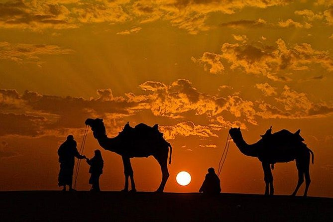 Nestled in the heart of the thar Rajasthan, the town of Pushkar. Explore all the amazing opportunities, the Pushkar Experiences for you and take home an unforgettable experience of the Rajasthani culture, food,music along with night stay at a desert camp.