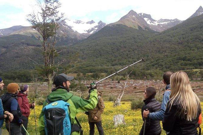 Trekking to Vinciguerra Glacier and Laguna de los Témpanos - Small Groups!, Ushuaia, ARGENTINA