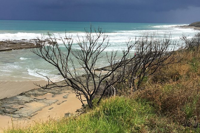 3-Day Melbourne to Adelaide Tour Including the Great Ocean Road, Gran Carretera Oceanica, AUSTRALIA