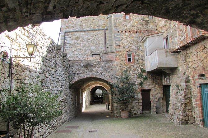 Private Transfer: Civitavecchia Port to Castellina in Chianti and vice versa, Chianti, ITALIA