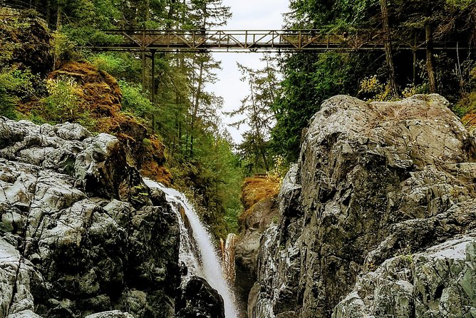 Waterfalls, Cathedral Grove Rainforest, and Coombs Private Tour with Hiking, Isla de Vancouver, CANADA