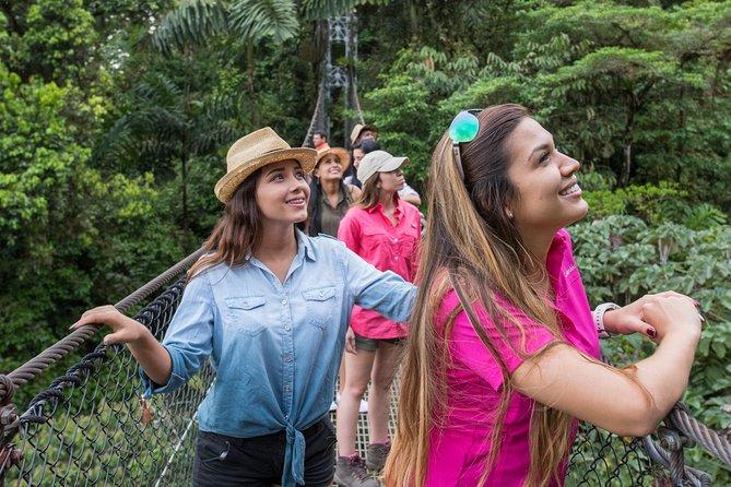Arenal volcano, hanging bridges and sloth encounter tour., Playa Flamingo, COSTA RICA