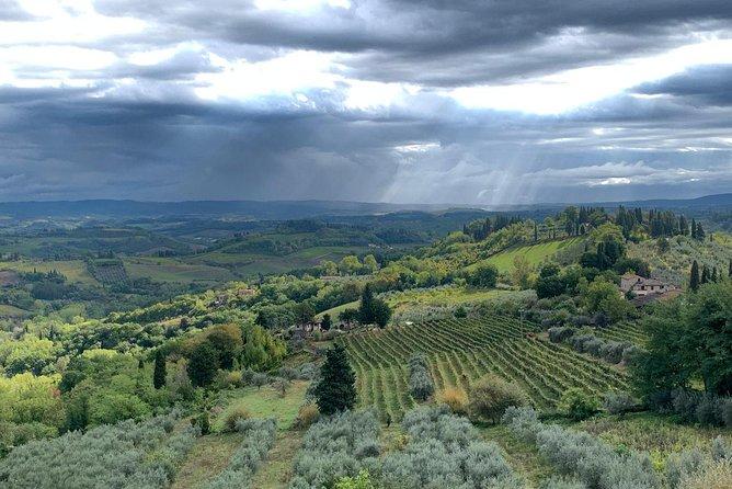Excursão particular: viagem diurna por Siena, San Gimignano e Chianti partindo de Florença, Florencia, Itália