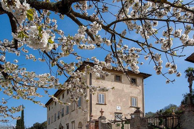 Wine Tasting inside a magnificent Tuscan Renaissance Villa, Arezzo, Itália