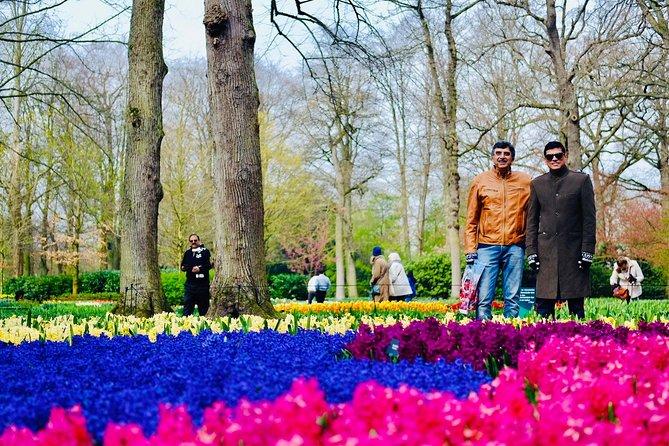 Guided Private Tours to Keukenhof / Tulip-garden (Amsterdam,The Hague,Rotterdam), Amsterdam, HOLLAND