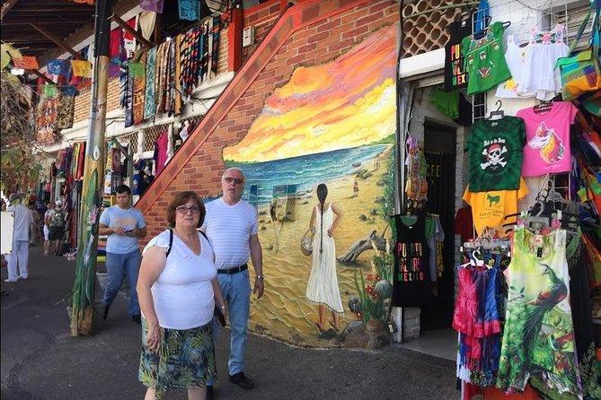8 Passenger Vallarta Private City Tour, Puerto Vallarta, MÉXICO