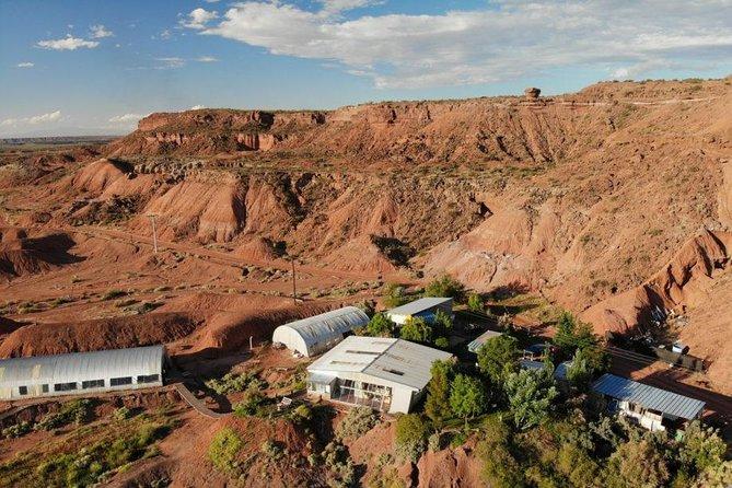 Experiencia Paleontológica en Barreales y Bodega, Cafayate, ARGENTINA