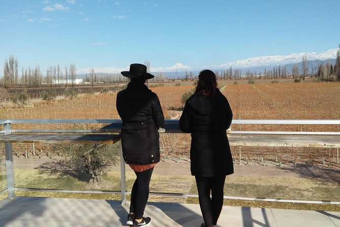 Exclusive Luján de Cuyo Wine Tour, Mendoza, ARGENTINA
