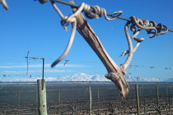 Passeio no Maipu (Mendoza, Mendoza, Province of Mendoza, Cuyo Tour), Mendoza, ARGENTINA