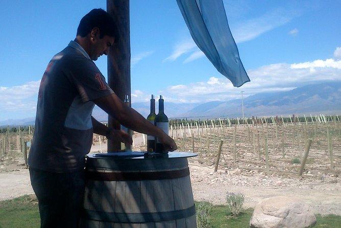 Paseeio no Valle de Uco, Mendoza, ARGENTINA