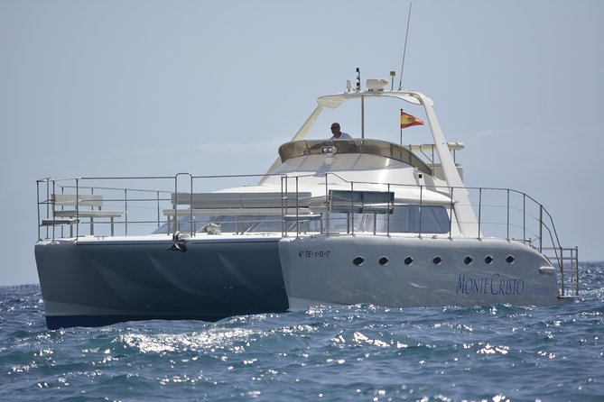 Whale and Dolphin Watching Luxury Catamaran, Free Meal & Transfers, Tenerife, ESPAÑA