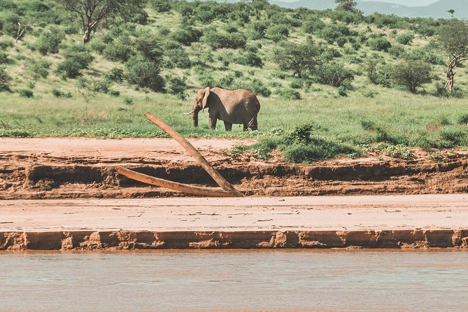 Join us on an exciting canoeing experience down the mighty Zambezi river. Your guide brings all the equipment, just bring your enthusiasm! As we head down stream we will be looking out for hippos, crocodiles, elephants, buffaloes, various small game and fascinating bird life. Over the course of two nights and three days we will cover the strip from Chirundo to Mtondo and we will be camping on islands. We will pick you up and drop you in Lusaka.