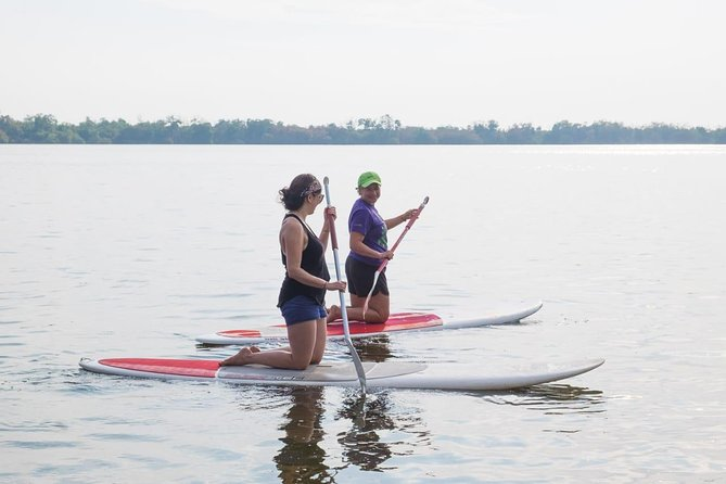 Kayaks ,paddle Boards And Bird Watching, Puerto Escondido, Mexico