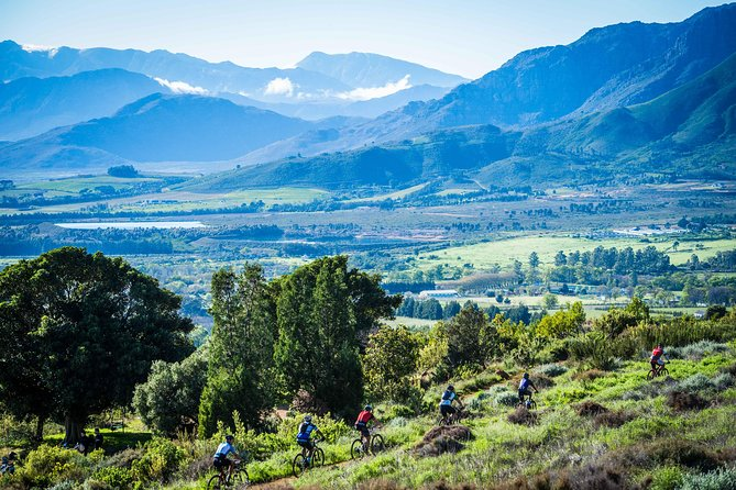 All fitness levels are welcome on this stunning 27k cycle throughout the Franschhoek wine valley. Get up close and personal with surrounding vineyards by hopping on a bicycle and joining us for a fun dayon the open road!