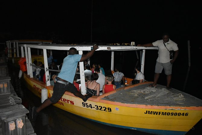 Dunn's River Falls and Luminous Lagoon Tour from Falmouth, Trelawny, JAMAICA