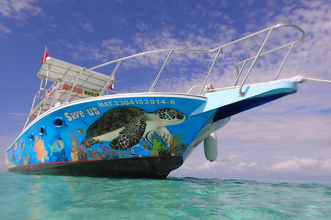 Excursión de esnórquel en Cozumel: arrecifes de Palancar, Colombia y Cielo, Cozumel, MEXICO