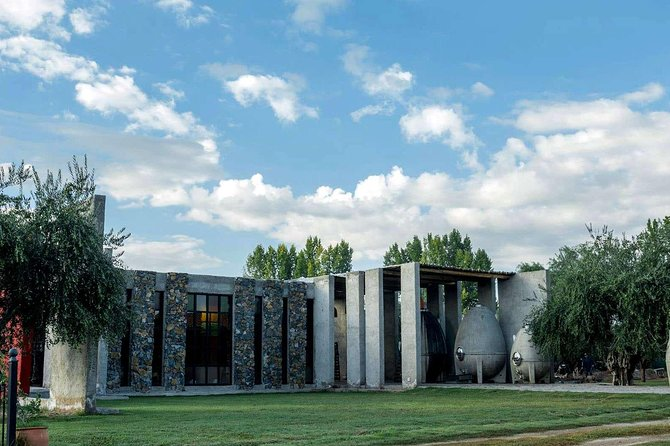 Private Day Trip Mendoza Winery with Airfaire from Buenos Aires, Buenos Aires, ARGENTINA