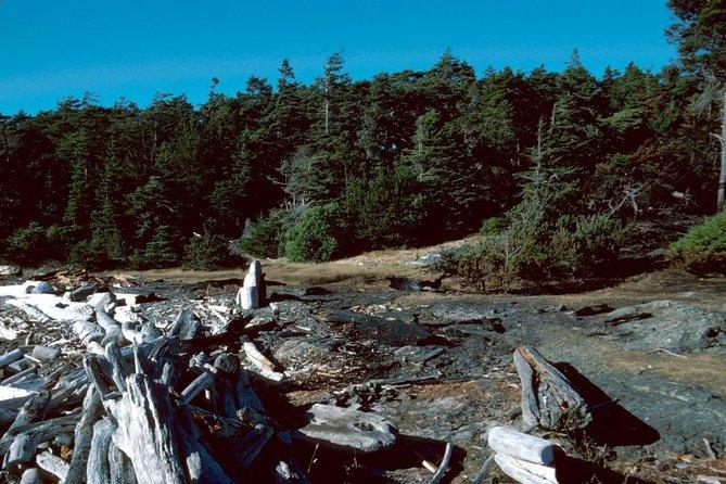 MÁS FOTOS, Water taxi to Discovery Island Marine Provincial Park