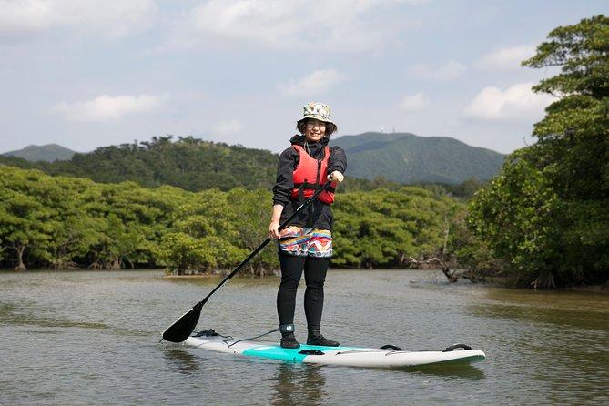 -Ishigaki Nagura River- Mangrove SUP Tour with English-Speaking Guide, Ishigaki, JAPÃO