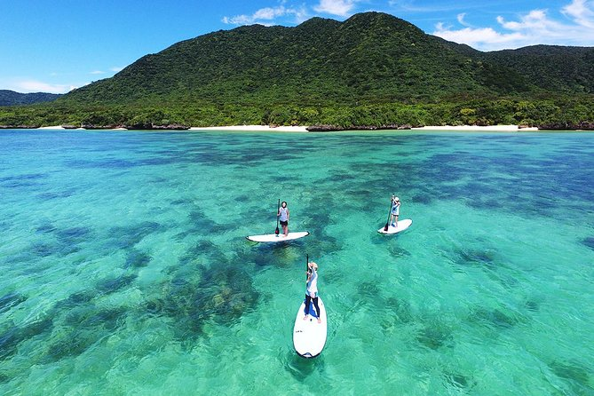 -Ishigaki Ocean- Stand Up Paddle Boarding (SUP) with English-Speaking Guide, Ishigaki, JAPAN