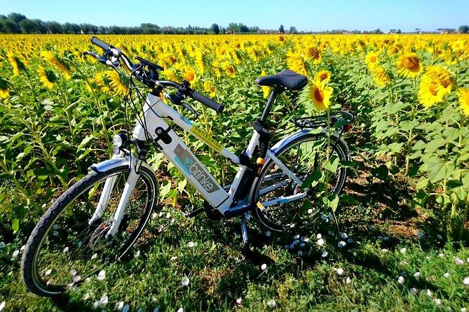MÁS FOTOS, Pisa E-bike Tour