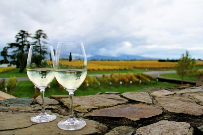 Private Shore Excursion:Explore Marlborough Wine and Scenic Delights from Picton, Picton, NOVA ZELÂNDIA
