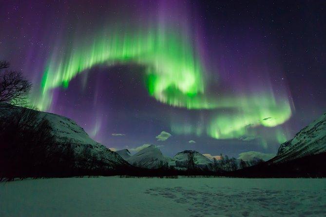 Small-Group Aurora Hunt Northern Lights Tour from Tromso, Tromso, NORUEGA