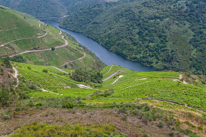 Wine regions of Galicia 4 Day Food & Wine small group