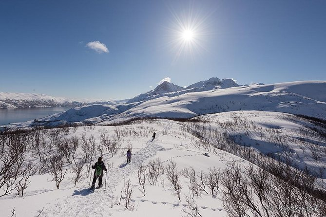 Small-group Snowshoeing Tour from Tromso, Tromso, NORUEGA