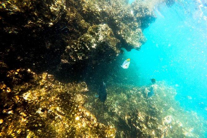 Manuel Antonio Ocean Kayaking & Snorkeling, Quepos, COSTA RICA