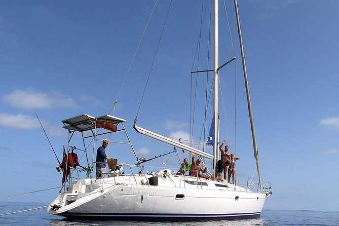 With a great passion for sailing and nature our Crew always do everything to give everyone the best holiday experience