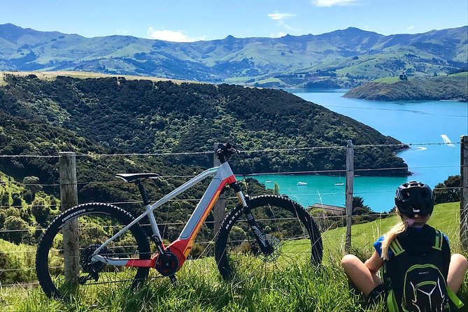 Coastal Cruise- Guided Electric Bike Tour in Akaroa, Canterbury, NOVA ZELÂNDIA