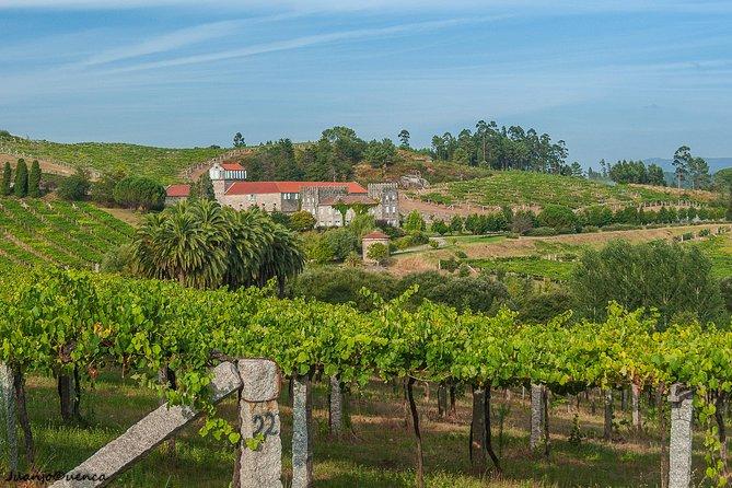 MÁS FOTOS, Albariño trails Private Wine Tour/Shore excursion from Vigo