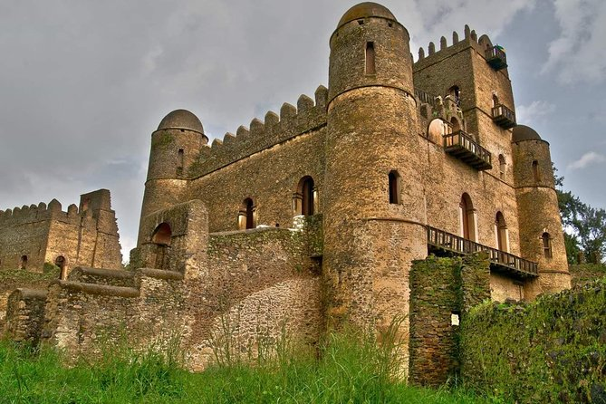 The history of the city of Gondar dates back to the 16th century.<br>It was once the capital of Ethiopia and the residence of Emperor Fasilid and his descendants. Do you know how many castles, churches and bridges were built during the rule of the Fasilides dynasty? The city's main imperial area, known as the Royal Enclosure, is listed on the UNESCO World Heritage List. What is the story of these royal palaces and emperors? What makes the Emperor Fasilid's Palace so special? We will visit the most beautiful church in Ethiopia, Debre Berhan Sellassie. The interior of the church is adorned with impressive murals, cherubs and paintings. What makes this church so valuable? A local charismatic guide will reveal the secrets and interesting facts about the city of Gondar.<br>
