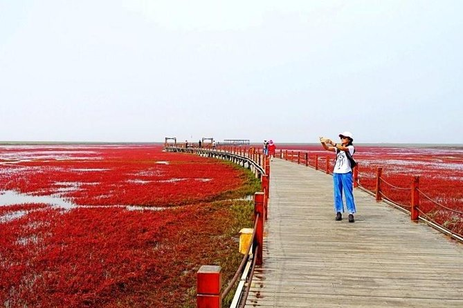 MAIS FOTOS, All-Inclusive Private Day Tour to Red Beach in Panjin City from Shenyang