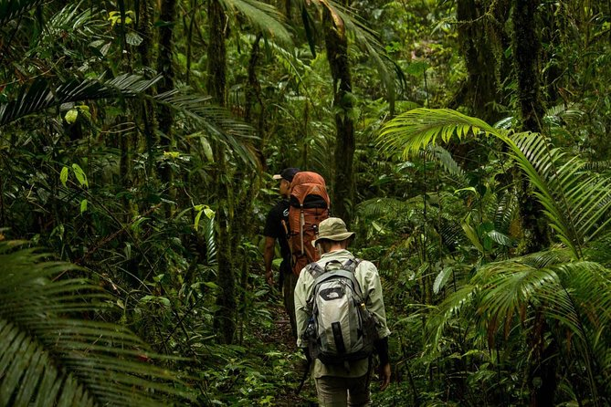 If you're a nature enthusiast, our private Sulawesi wildlife packages hit the very best wildlife-watching destinations in Tangkoko National Park. Spend your day to private explore Tangkoko National Park with Hotel pickup from Manado. The ranger guide in Tangkoko nature reserve will take you to a tree that is locally famed as the home of a family of Tarsiers. <br>Surround yourself with black-crested critically endangered macaques leaping from tree to tree. See other interesting animals such as Sulawesi bear cuscus, endemic Sulawesi dwarf kingfisher and Sulawesi hornbill flying overhead, ochre-bellied boobooks, and spotted tarsier hiding beneath a leaf.