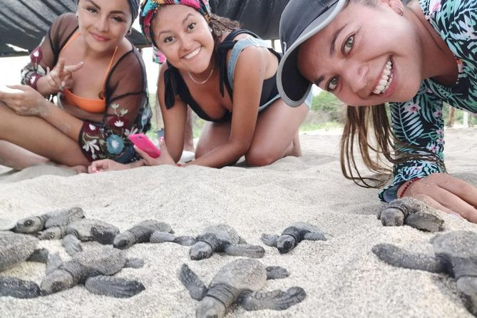 Sea Turtle Release Experience, Puerto Escondido, Mexico